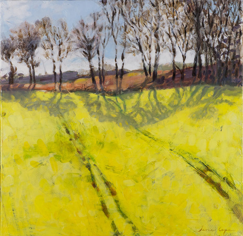 'Yellow shadows', oil and mixed media on canvas, 50 x 50cm, framed - SOLD