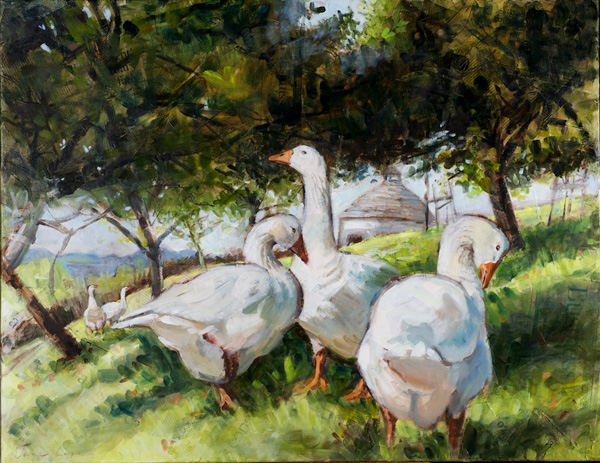 Ashburton Geese - Oil on canvas, 90 x 75 cm, SOLD