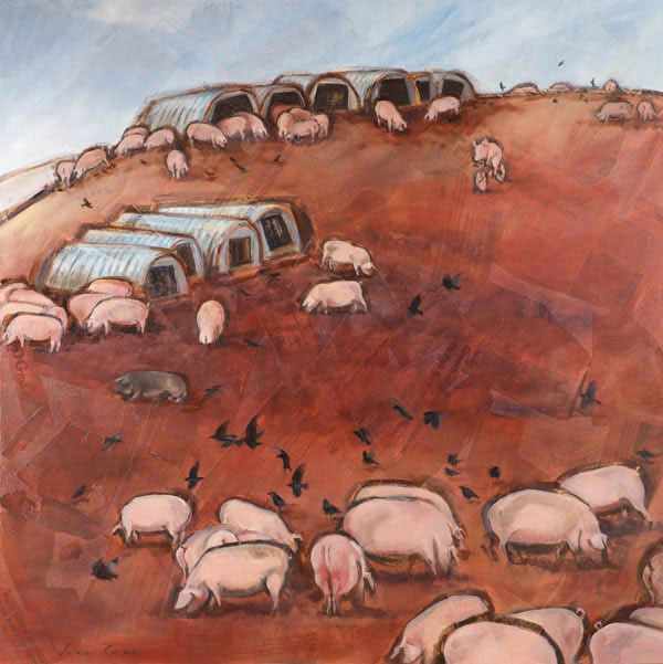 Pigs at Hayes Barton 1 - Oil and mixed media on canvas, 100 x 100cm, deep edge canvas, print available