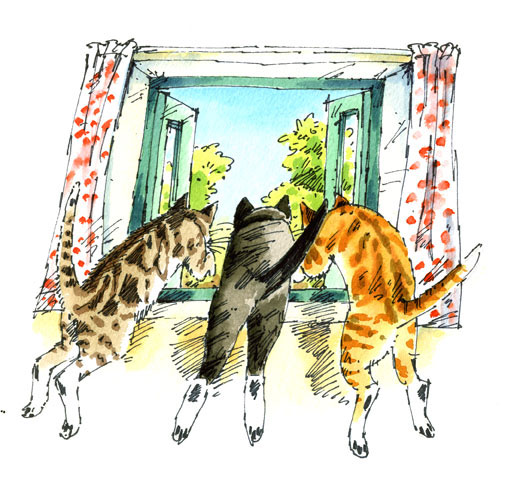3 cats - illustration by Jane Cope